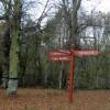 Limetree Avenue Clumber Park signpost