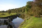 Afon Taf, St Clears