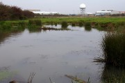 Pond by Warton Aerodrome