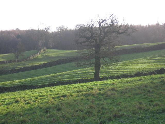 View across fields south of Holymoorside