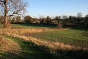 Farmland near Colston Bassett