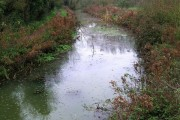 Blyth River at Halesworth