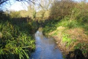 River Bulbourne in Bourne End