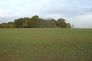 Countryside near Nuthall