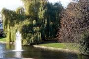 Fountain in the Hiz