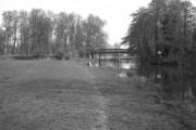 Broad Oak Bridge, Wey Navigation