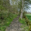Bubnell - Footpath on eastern edge of St Mary's Wood