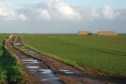 Sheep Walks, Fraisthorpe