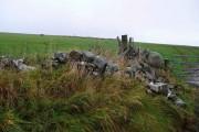 Rough grazing near Garrochtrie