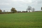 Farmland near Moor Farm