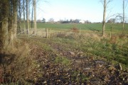 Track near Madresfield Nursery