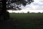 Farmland west of Allesley Green