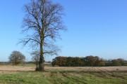 Farmland north of Bitteswell