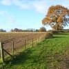 Farmland, Greys