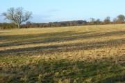 Farmland, Rotherfield Greys