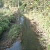 River Parrett north of Petherton Bridge
