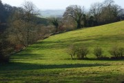 Pasture below Homer Farm