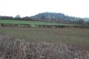 Farmland near Aconbury Hill