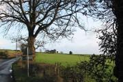 Farmland on the slopes, Little Dewchurch
