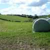 Haylage bales near Lower Bryn-Elen