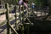 Pooh Sticks Bridge, Ashdown Forest