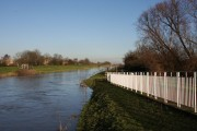 Old Bedford River at Earith