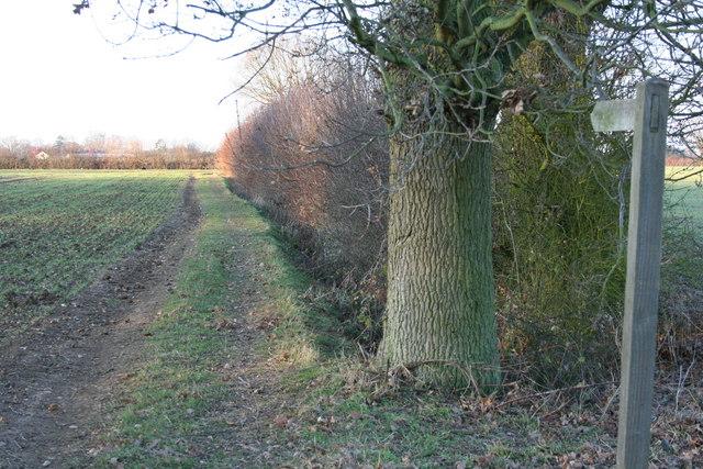 Footpath to Greys Hall