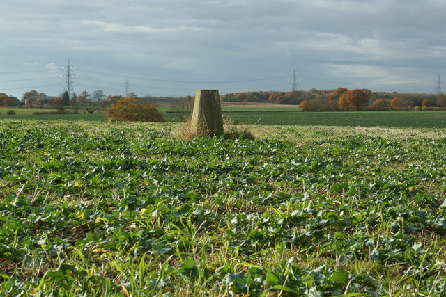 Trig Point, Severals Farm, Assington