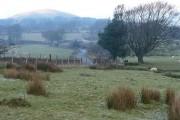 Farmland near Manmoel