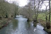 River Arrow