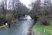 River Arrow at Pembridge