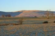 Pasture, Castle Sowerby