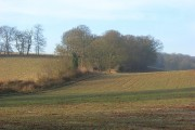 Farmland at Hollandridge Farm