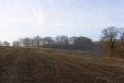 Farmland below Hollandridge Farm