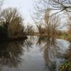 River Lark near Barton Mills
