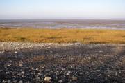 Beach and salt marsh, Hest
