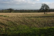 Farmland at Apperley