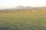 Farmland within the major bend of the Afon Soch