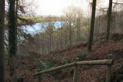 Woodland walk above Hawkridge Reservoir