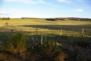 Farmland to the east of Meikle Kilmundie