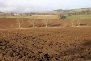 Winter fields at Bardmony