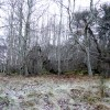Ruined croft near Balnagown