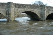 Centre span - Leintwardine Bridge