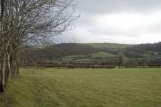 Fields at Glanrhyd-tynoeth