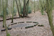 Bestwood Country Park - campfire site