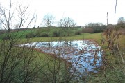 Waterlogged field between Oxenhall and Gorsley