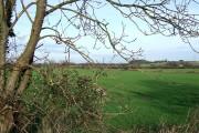 Farmland by Shareshill, Staffordshire