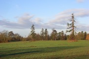 Farmland, Arborfield