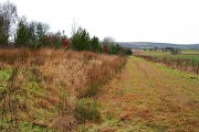 East of the Cromarty Firth Industrial Estate