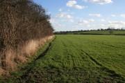 Farmland near Plumtree